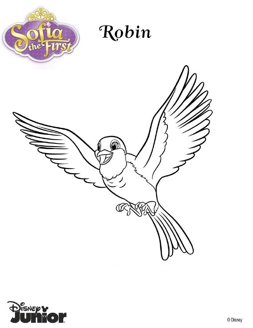Princess Sofia coloring page. Color Robin the pigeon. Drawing of ...