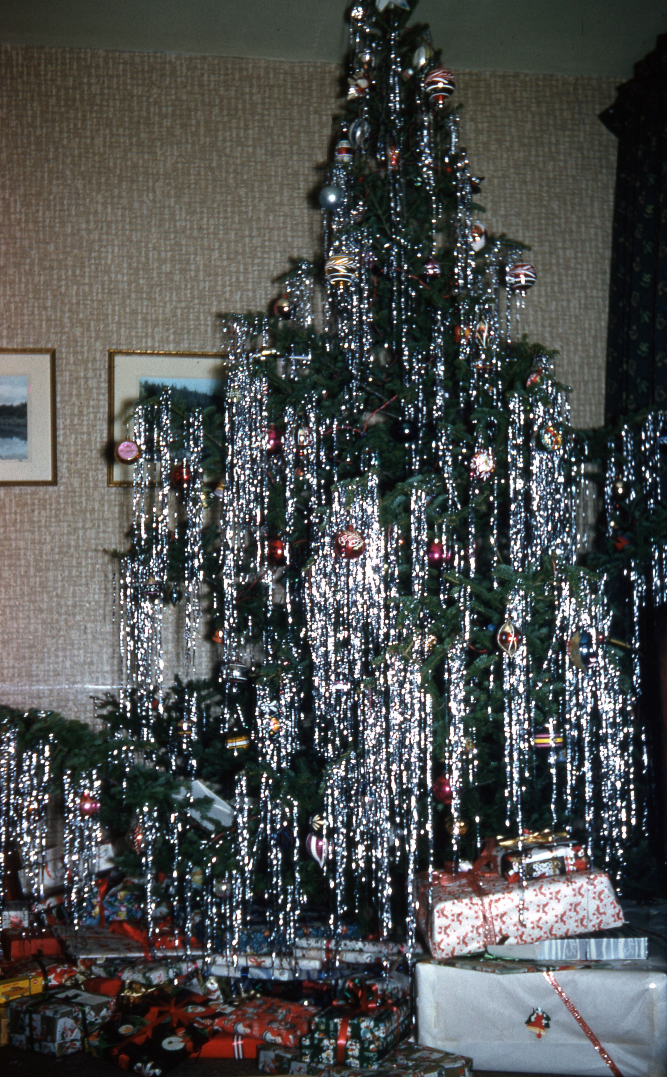 Wild Tree, 1950s | Christmas ideas | Pinterest