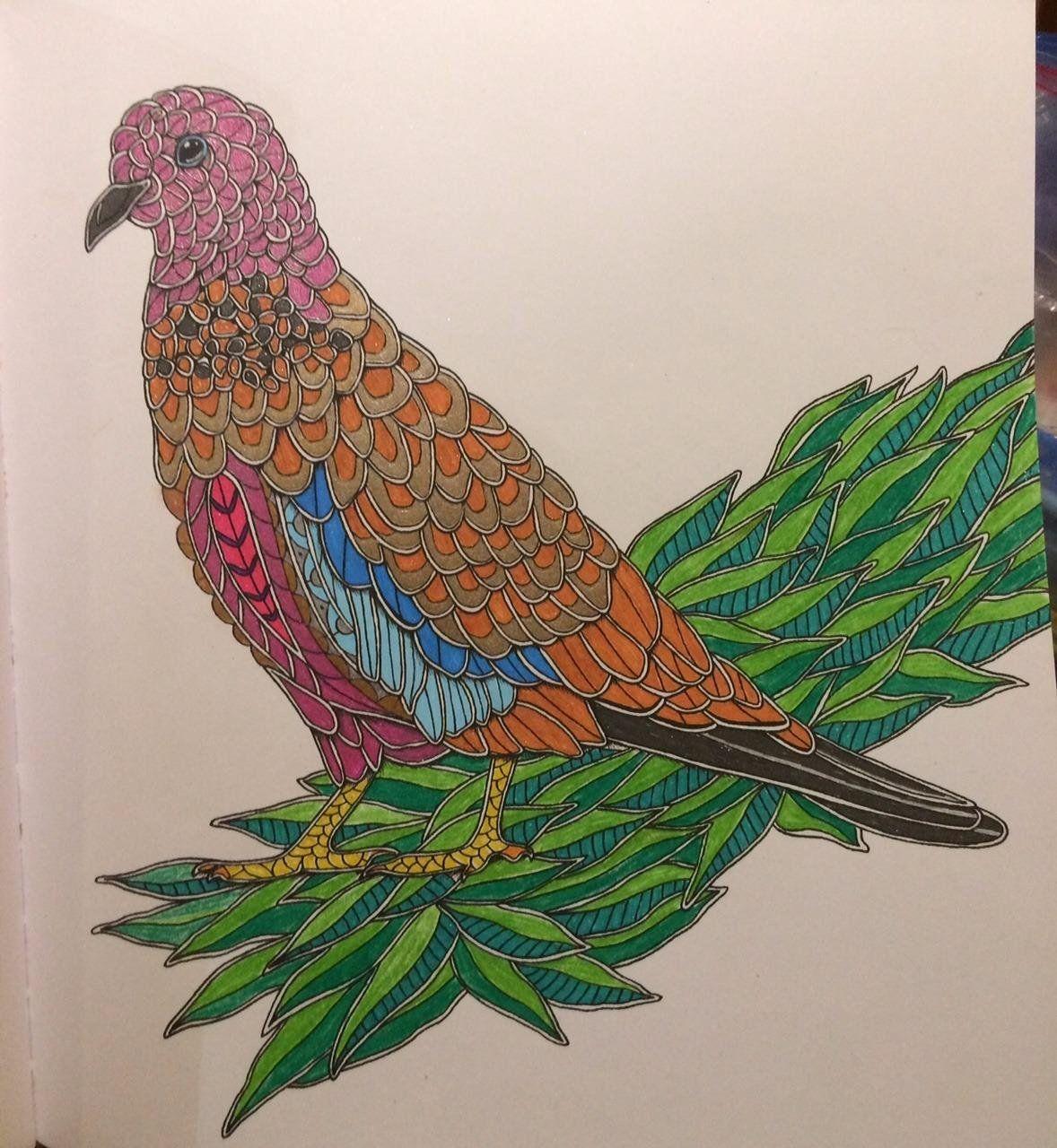 Robot Check Coloring Books Birds Color
