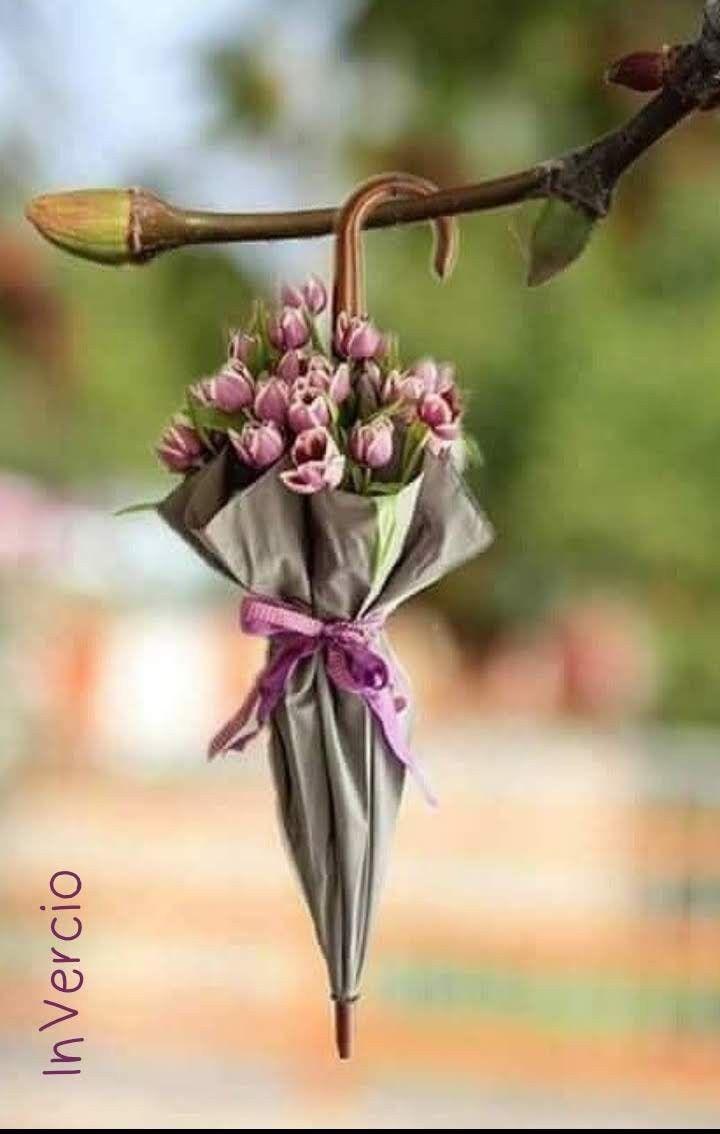 Пин от пользователя Тата Савкина на доске Весна | Картинки ...