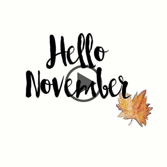 Hello November New Month New Mindset New Goals . #lifetimeathletic #lifetimeaathleticnutrition