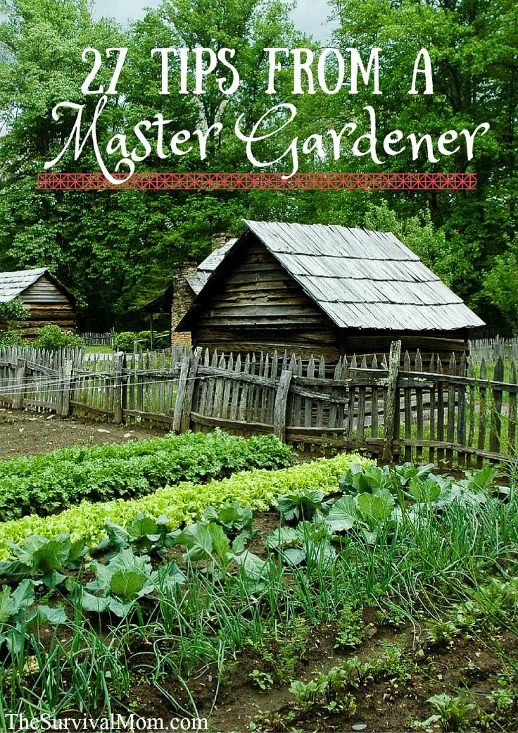 27 Tips from a Master Gardener - Survival Mom
