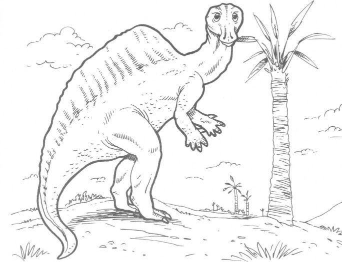 Ouranosaurus Dinosaur Dinosaur Coloring Pages Dinosaur Coloring