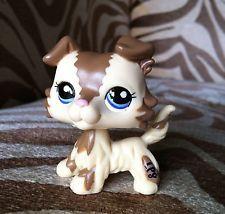 Littlest Pet Shop 2210 Brown And Cream Collie Blue Eyes