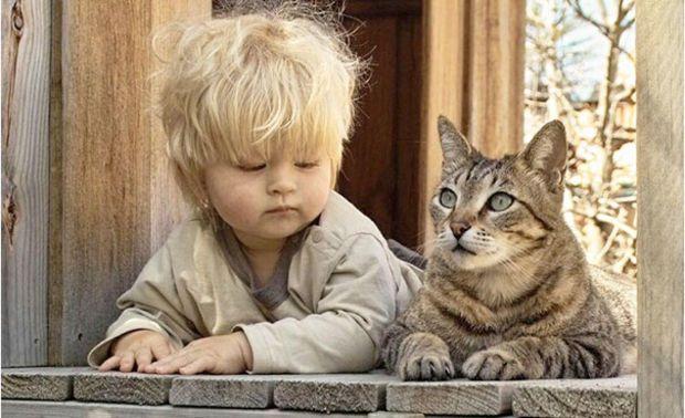 Photo via animal friends