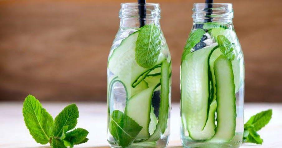 Ingredientes 1 Pepino Medio Descascado 2 Litros De Agua 12 Folhas