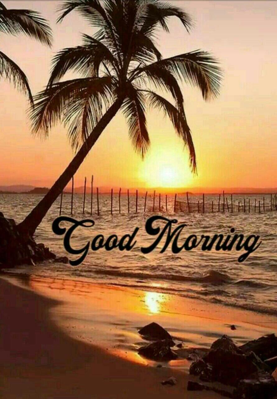 Good Morning Beach : morning, beach, Roger, Morning, Sunrise,, Handsome,, Pictures
