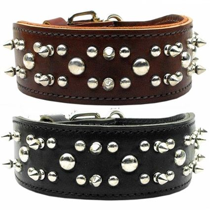 """2"""" wide leather dog collars adorned with spikes and studs."""