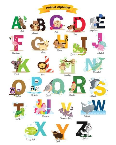 Enjoy This 8 X 10 Free Printable With Animal Alphabet Free Nursery Printables Kids Room Printables Animal Alphabet