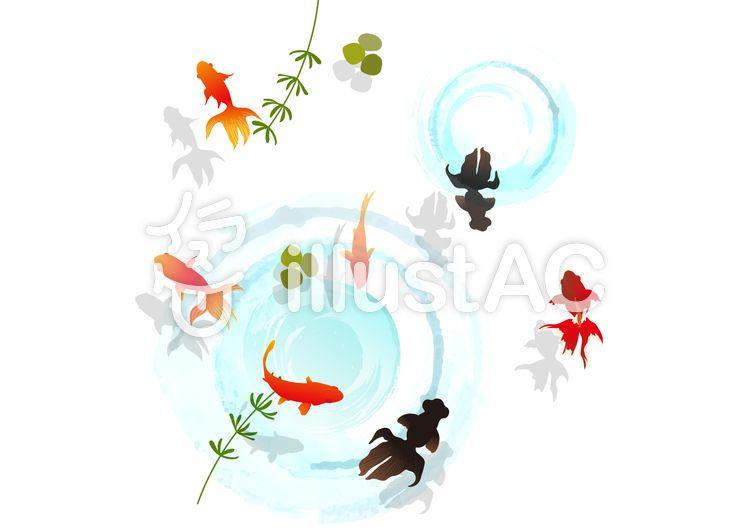 無料素材 夏 に使えるかもしれない 背景素材 金魚 暑中見舞い 夏祭り 金魚すくい ポスター 広告 暑中見舞いはがき Illustration Illustrator フリー素材 Freevector フリーイラスト 暑中見舞いはがき フリーイラスト イラスト