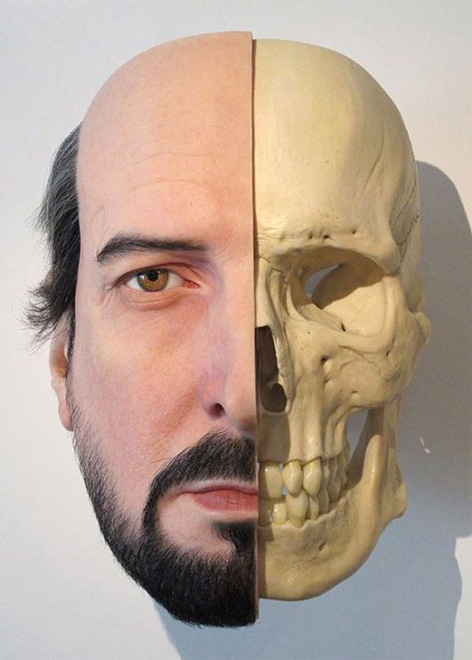 Hyper Realistic Sculptures By Sam Jinks Human Head Male Face Half