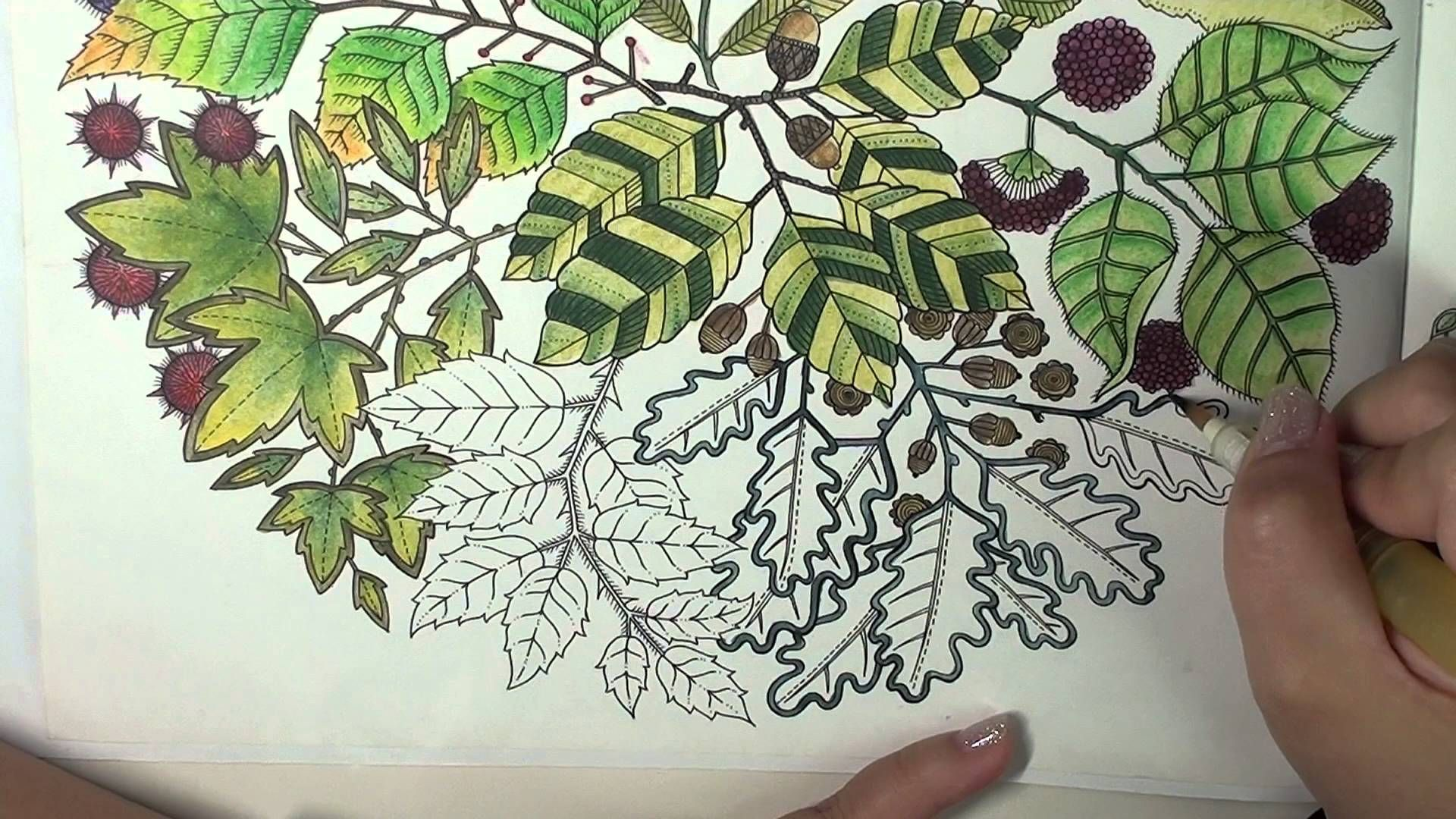 Colorvlog Secret Garden Speed Coloring Page 7 Part 3 Final