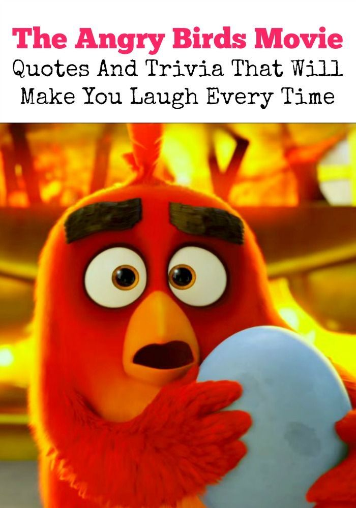 The Angry Birds Movie Quotes And Trivia That Will Make You Laugh Angry Birds Movie Angry Birds Movie Quotes