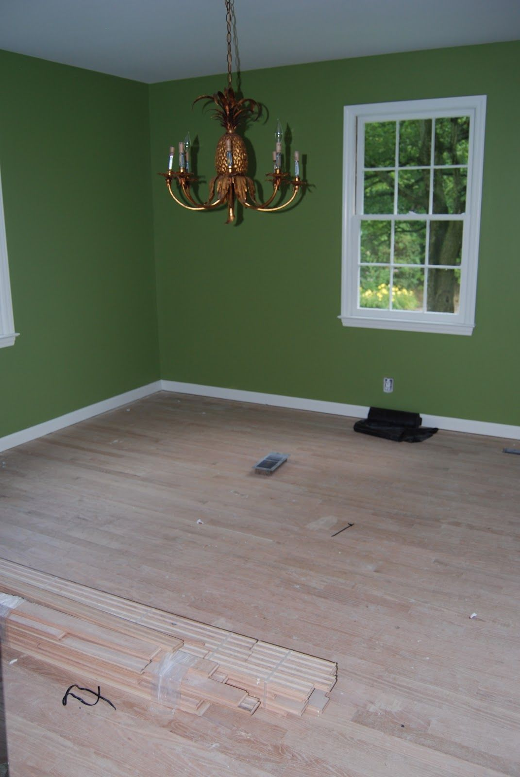 Dining Room, painted Sherwin-Williams' Leapfrog---painting