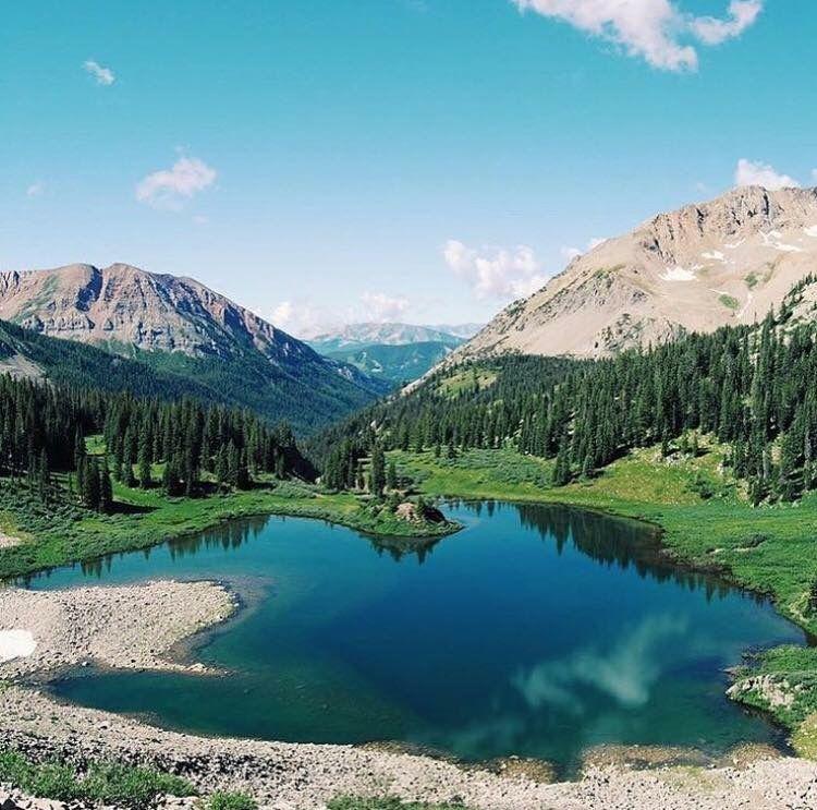 Mountain Life | Colorado | Colorado wildlife | Rocky ...