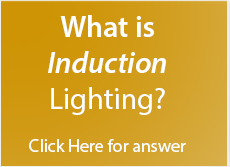 Induction Lighting Fixtures Led Bulbs Induction Lamps Led Candelabra Bulbs Induction Cold Storage