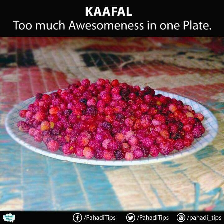 Kaafal