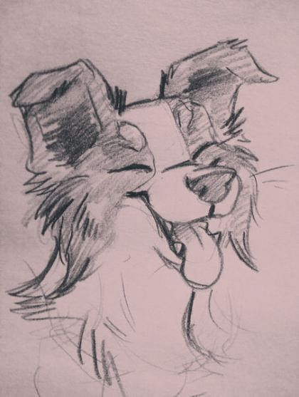 #animalsketches #des #ideen #karikaturjungen #von #zeichnen Zeichnungskarikaturjunge 26 Ideen #drawing