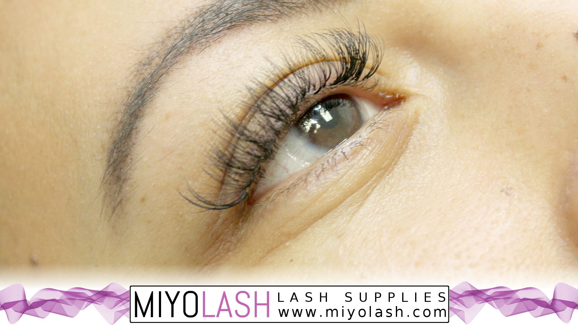 Volume Mink OTD | Miyo Lash | Eyelash extension supplies
