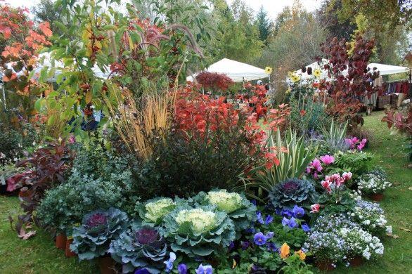 Un giardino che fiorisce tutto l 39 anno una gioia per gli for Giardini fioriti tutto l anno