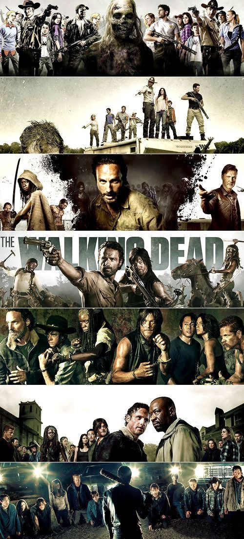 CHARACTERS COLLAGE The Walking Dead Poster NEW Walking Dead Poster