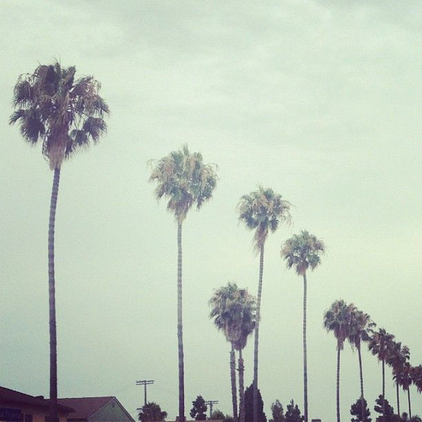 Goodbye LA...