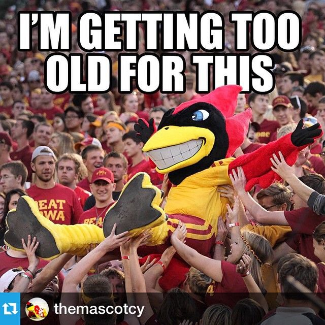 In Honor Of Homecoming And Cy S Birthday Week Cy Is Turning 60 Iowa State Cyclones Iowa State College Team