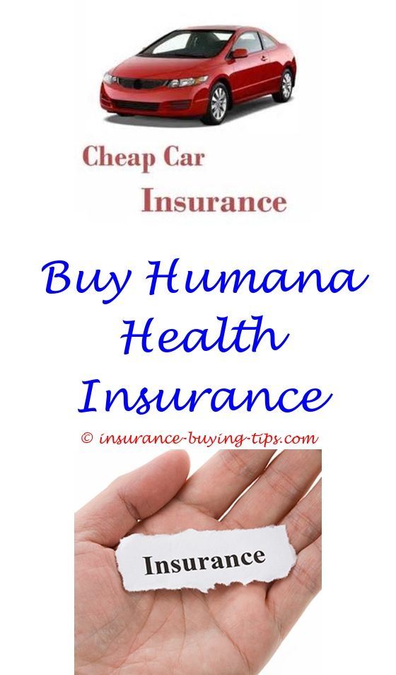 My Quote Car Insurance | Travel Insurance Online, Term Life Insurance And  Term Life