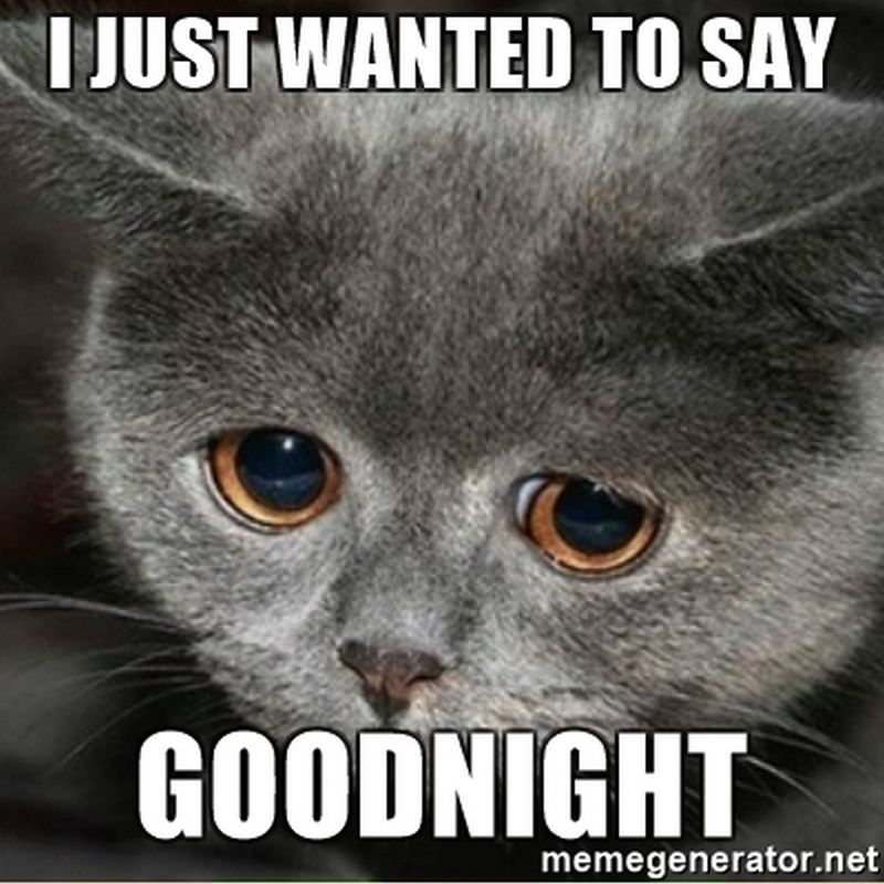 101 Good Night Memes For When You Want Funny Goodnight Wishes Good Night Funny I Need Cuddles Funny Cat Memes