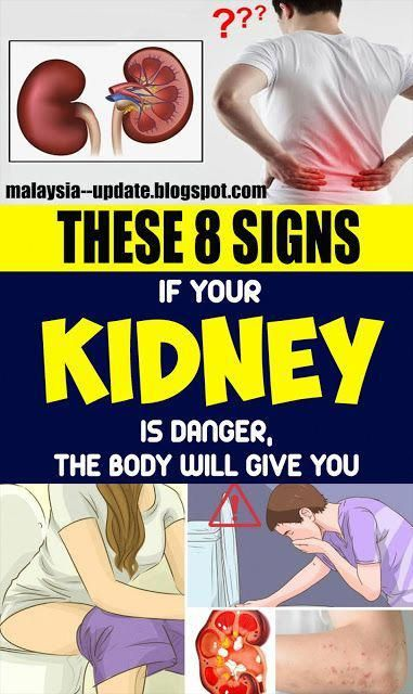 In the event that Your Kidney Is in Danger the Bo
