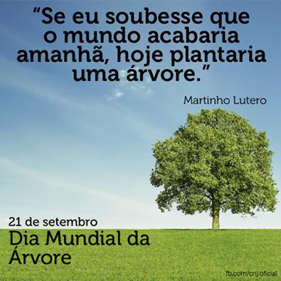21 De Setembro Frase Dia Da árvore 1 Datas Comemorativas 09