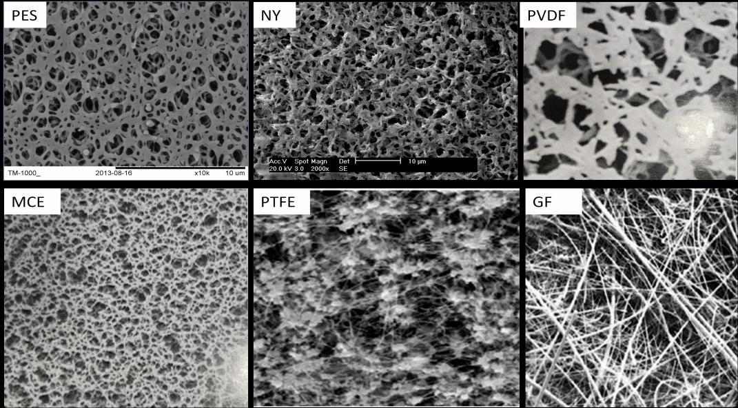 Microstructure Of Membranes Material Membrane Material Scientific