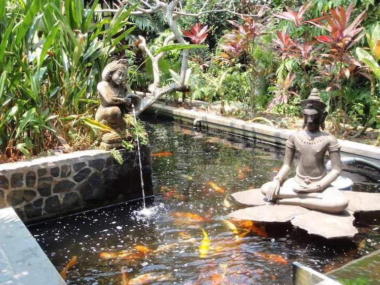 carpes koï et statues de jardin zen dans le bassin à poisson entouré