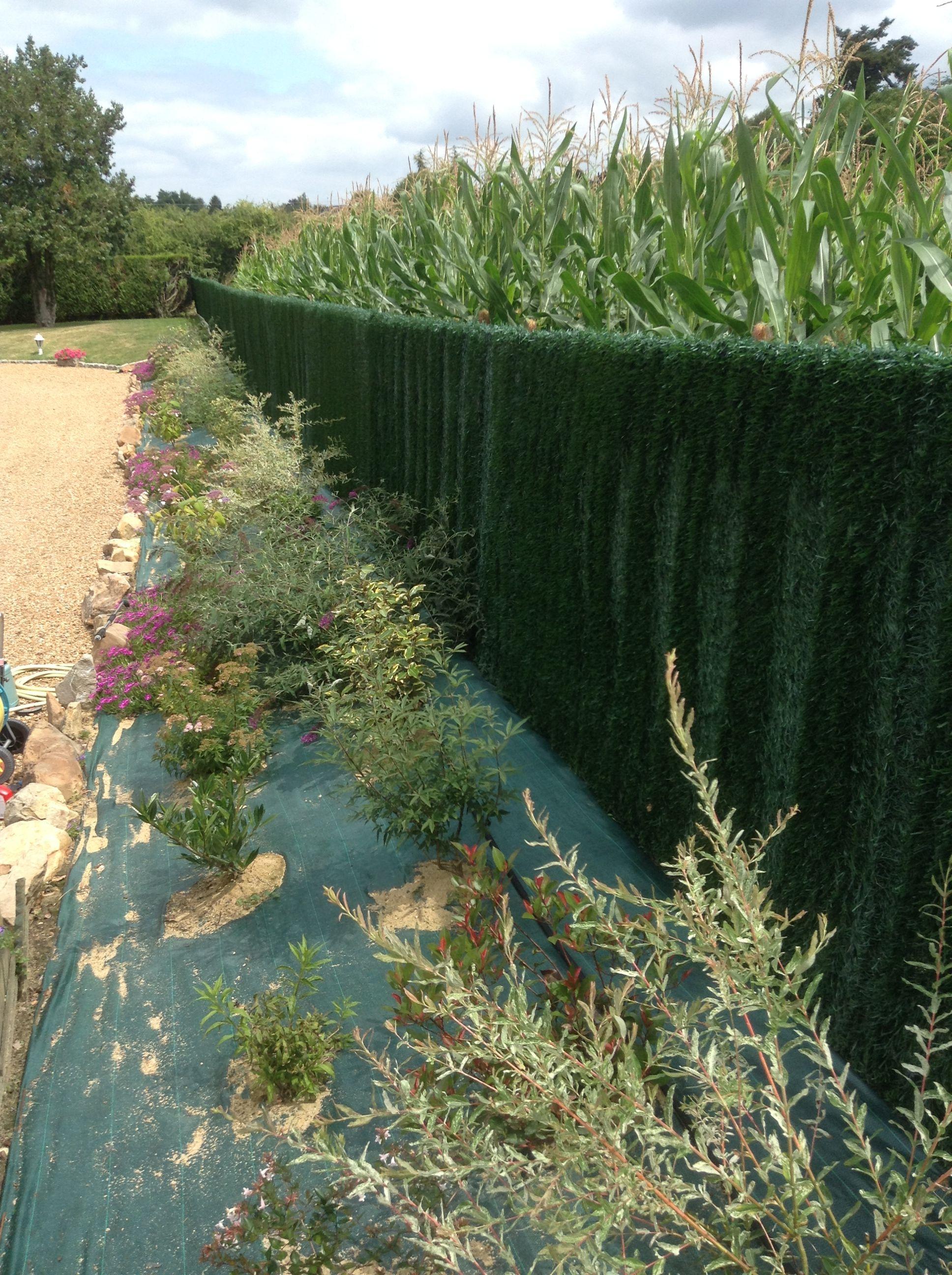 La Toile De Paillage 96 Grammes Existe Aussi En 130 Grammes Classique Ou Biodegradable Toile De Paillage Paillage Jardin Toile
