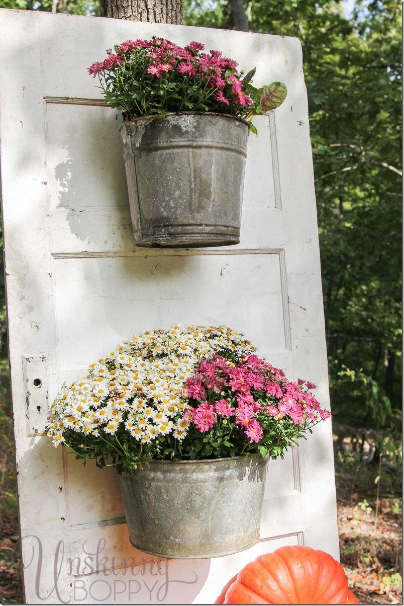 Mums in a bucket hanging from an old door love this idea for