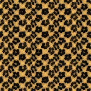 Leopard Print Wallpaper - Bing Images