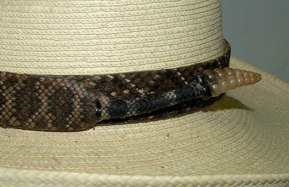 Diamond Back Snake Hat Bands Hatbands Rattlesnake Hatbands Rattlesnake And Python Belts Hat Band Mens Accessories Fashion Rattlesnake Skin