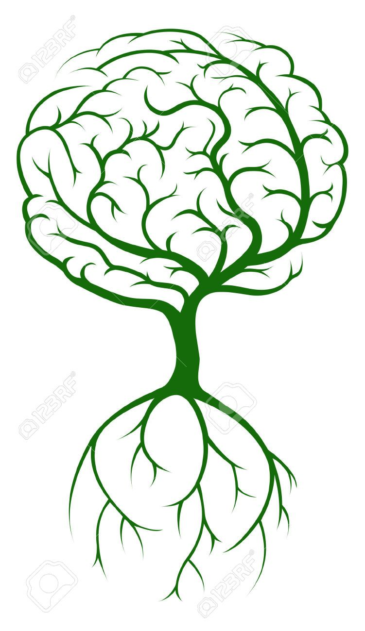 41996636-Brain-tree-concept-of-a-tree-growing-in-the-shape-of-a ...