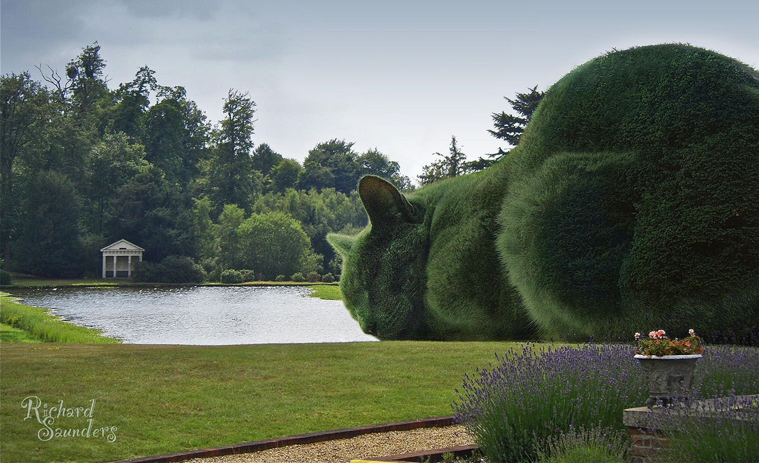 Giant green cat in garden...a sculpture? Plant? The Topiary Cat was inspired by Tolly, Richard Saunders' Russian blue cat....photos touched upp  by photoshop.