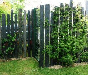 Intégration portillon dans clôture pieux de schiste | Déco ...