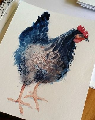 Tutorial Little Black Hen In Watercolor Valwebb Wordpress Com