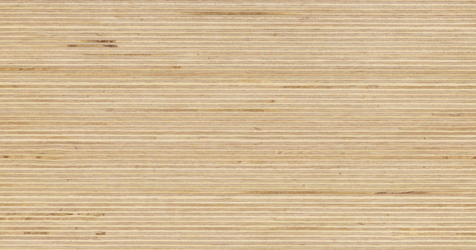 Plexwood Birch End Grain Laminated Decorative Veneer