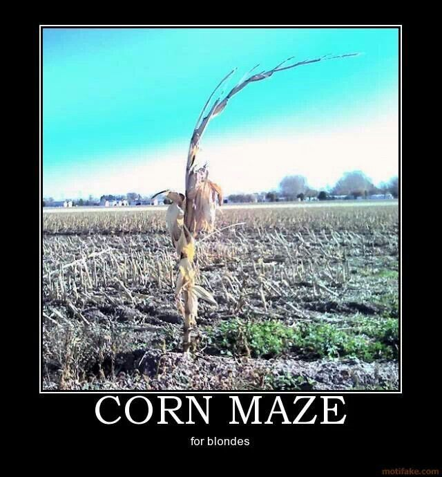 Blonde Jokes Corn Maze Demotivational Posters Blonde Jokes