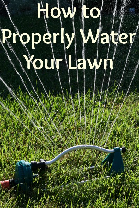 This video discusses the different types of sprinklers - How often should you water your garden ...