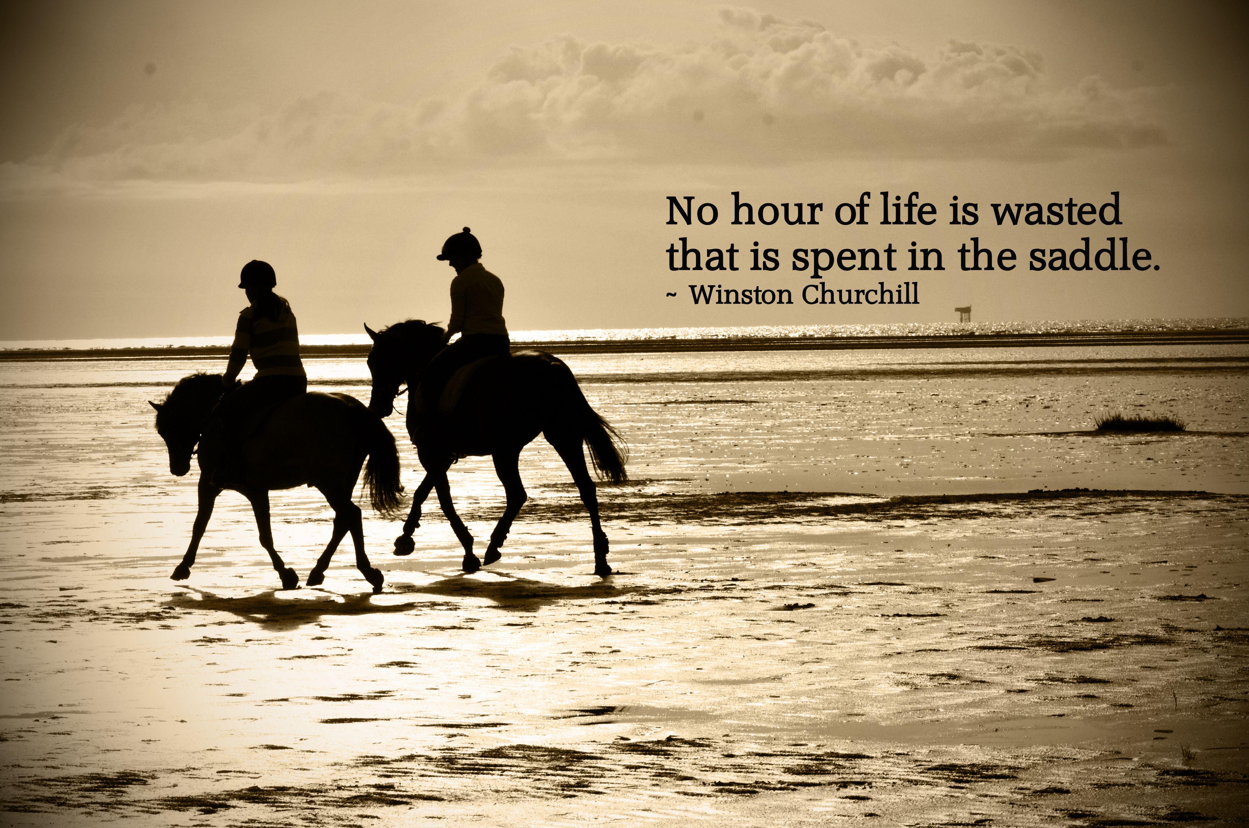 Famous Quotes, Wisnton Churchill, Horses | rebeccapenny.co ...