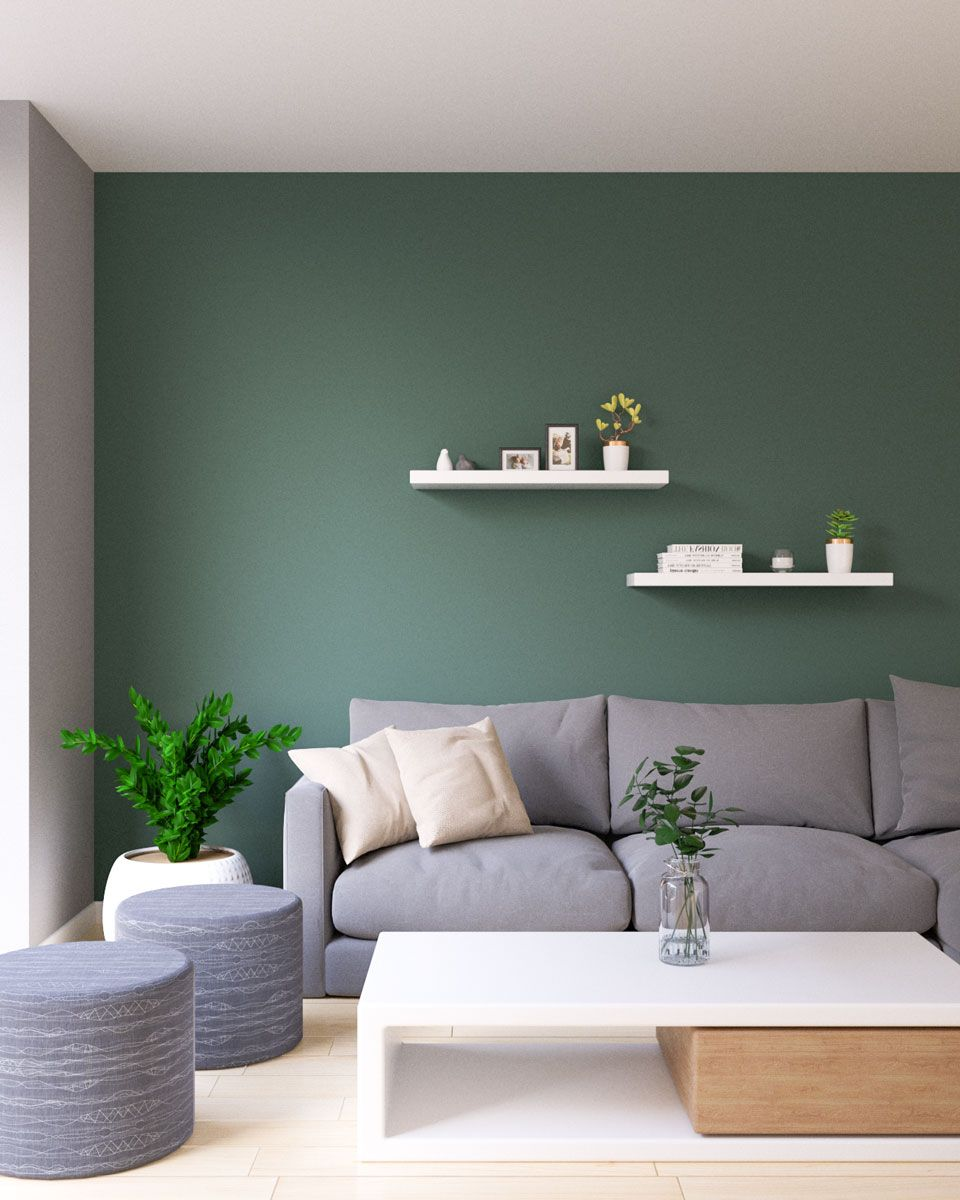 Accent Wall Accent Walls In Living Room Green Accent Walls Living Room Colors