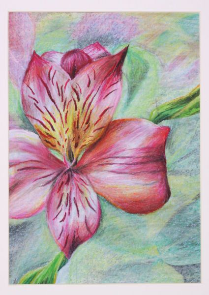 9c6984fced64f oil pastel flower - nice background | To paint | Art drawings ...