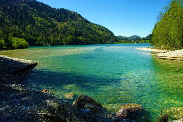 Surviving Europe: Salzburg Day Trips 10 Austrian Lakes Worth a Visit -  Hintersee | Day trips, Trip, Lake