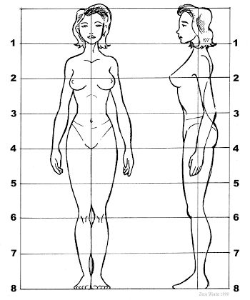 female proportions pencil pinterest drawings figure drawing