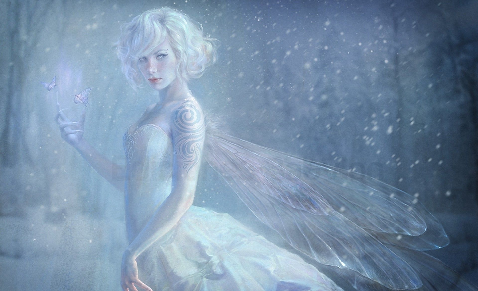 Rsultat de recherche dimages pour fairy blue snow